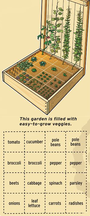 square foot garden idea.png